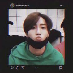 Han Jisung Han Jisung Han Jisung Edit, he's so squishy stop Kpop Gifs, Baby Squirrel, Kid Memes, Quokka, Crazy Kids, Kids Videos, K Pop, Video Editing, Boy Groups