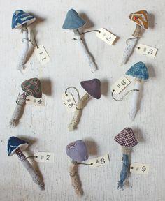 mushroom specimens