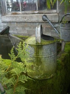Well weathered watering can
