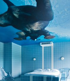 How cool is this? Artist Richard Hutten designed a mural where an elephant swims on a bathroom ceiling. It's in the Teaching Hotel Chateau Bethlehem in Maastricht, Netherlands. I need to see this in person!