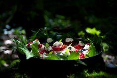 Blackberry, Strawberry, Fruit, Outdoor, Passion, Food, Outdoors, Blackberries, Eten