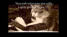 Chelo kote knijki / Чело коте книжки, A kitty read booklets