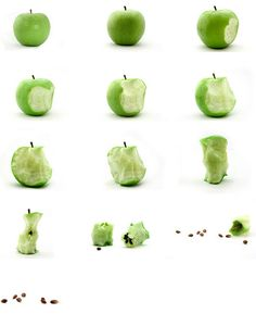 This image shows the deterioration of an apple from its purest form to the seeds. East sequential image shows a bite tak Still Life Photography, Nature Photography, Photography Guide, Sequence Photography, Narrative Photography, Growth And Decay, Apple Bite, Vegetables Photography, Image Shows