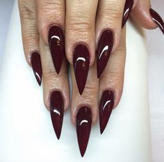 ⚜ luxury nails ⚜ Claws Perfect proportions