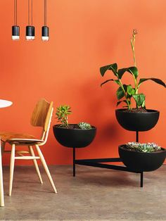 """A bit more """"moderne"""" than I usually go for....but I have to applaud the planter as well as that vivid orange wall!"""