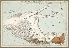 """""""Pegasus and Equuleus"""", plate 15 in Urania's Mirror"""