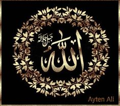 Bano Qudsia Quotes, Islamic Images, Quran, Allah, Doa, Aide, Thanks, Good Evening Greetings, God