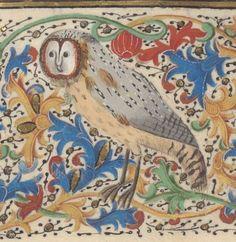 La Fleur des histoires, de Jean Mansel, ou « les hystores rommaines abregies, prinses sur Titus Livius, sur Lucan, Orose, sur Suetoine  1454  Ms-5088 réserve  Folio 210r