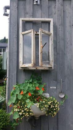 Ein altes Waschbecken als Blumentopf umfunktioniert...