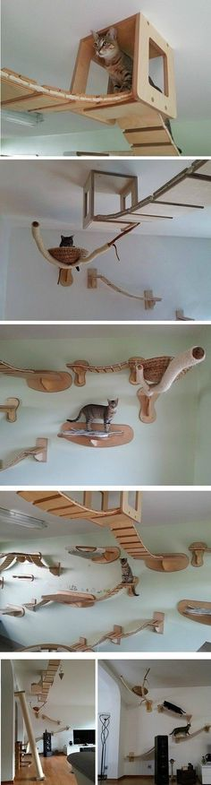 Cat furniture diy pictures 68 Ideas Cat furniture diy pictures 68 Ideas The post Cat furniture diy pictures 68 Ideas appeared first on Katzen.