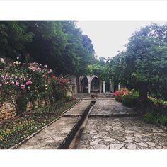 Balchik Botanical garden Bulgaria Amazing Gardens, Beautiful Gardens, Ponds For Small Gardens, Gravel Path, Gardening, Top Destinations, Ornamental Grasses, Bulgaria, Landscape Architecture