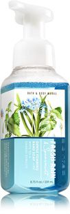 Fresh Rain & Spearmint Gentle Foaming Hand Soap - Bath And Body Works