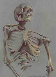 Artwork, sketches, paintings, drawings and inspiration for art enthusiasts by an artist in Atlanta, Georgia. Skeleton Drawings, Skeleton Art, Daily Drawing, Life Drawing, Human Body Art, Drawing Studies, Spirited Art, Aesthetic Painting, Anatomy Art