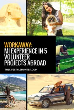 Workaway: my experience in 5 volunteer projects abroad Volunteer Jobs, Volunteer Abroad, Volunteer Programs, Travel Around The World, Around The Worlds, Desert Tour, Best Blogs, Frases, Home