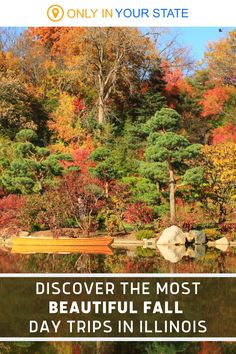 Add these beautiful Missouri day trips to your fall travel bucket list. All stunning outdoor destinations perfect for family fun, discover a variety of things to do including visiting Japanese gardens and exploring local hiking trails. Enjoy the outdoors at our best state parks, get lost in the world's biggest corn maze, and more. Fall Vacations, Vacation Destinations, Vacation Spots, Vacation Ideas, Local Hiking Trails, Adventure Farm, Starved Rock State Park, Corn Maze, Autumn Scenery