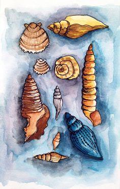 Alisa Burke — shells original watercolor