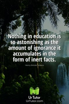 Education Qoutes, Find A Tutor, Online Tutoring, Physics, Facts, Student, Website, Physique