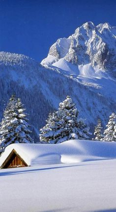 Winter Szenen, Winter Magic, Winter Christmas, Winter Blue, Winter Photography, Landscape Photography, Nature Photography, Winter Pictures, Nature Pictures