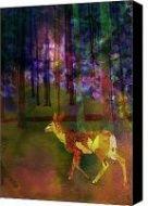 New Media Art  My image Back to the Forest was posted here by @Jim JFantasma Photography  #JGazoMcKim