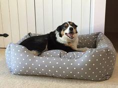 #happydog #happycustomer
