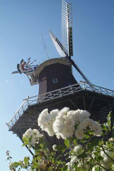 Die Mühle in Upgant-Schott ist von Mai bis Oktober geöffnet. Fachkundige Vereinsmitglieder führen Besucher gerne durch die Mühle. Außerdem wird Kaffee, Tee und Krintstuut angeboten.