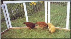 Martha's light-weight, portable fence panels are inexpensive to build and easy to rearrange.