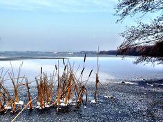 #Winter am Hagenburger Kanal