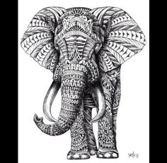 Art elephant drawing