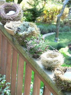 Twigs, moss, leaves, grasses -- whatever your yard has to offer -- can go into making a variety of nests.