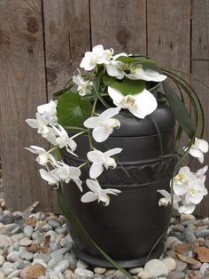 Blumen Bach, Bernkastel-Kues