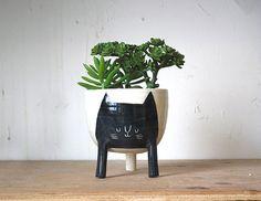 Three-legged Planter with Black Cat on White- planter on stilts / legs - cute animal succulent / seedling pot