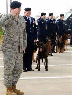 39th Security Forces Squadron military working dog handlers salute during the playing of the national anthem during a memorial service in honor of Ronnie, a fallen MWD Feb. 25, 2010, at Incirlik Air Base, Turkey. (U.S. Air Force Photo/Senior Airman Alex Martinez)