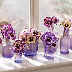 Pansy and Viola Windowsill - pretty centerpiece idea