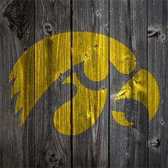 Iowa Hawkeye Fence...if I ever have a fenced in backyard, I am so doing this!
