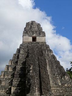 Tikal remarks Guatemalan's culture, roots and ancient history about our ancestors, The Mayans.  This place is very interesting for the people who likes adventure, danger and discover how majestic the ruins are there. Just wonderful!!