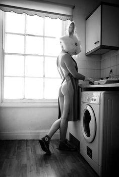 Cooks like a rabbit!