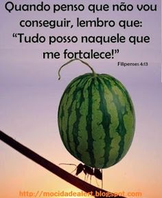 Mocidade Alerta.com: Os mais inspiradores versículos da Bíblia Sagrada para Whatsapp e Facebook