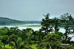 Rainforest  Resort Gamboa 16 de maio de 2015