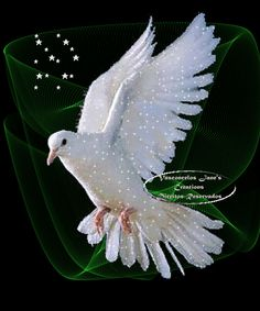 White+Dove+Holy+Spirit | Holy Spirit White Dove!~ photo 00iV051ZycA.gif