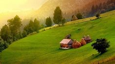 Travel This World Eastern Europe, Darts, Romania, Mystic, Golf Courses, Travel Photography, To Go, Landscape, World