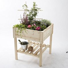 Gardening  Natural Cedar Organic Garden Table * Find similar gardening products by clicking the image