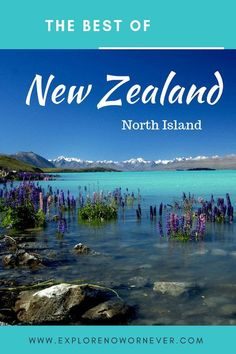 """See New Zealand North Island """"Must-Sees"""": The stunning Waitomo Glowworm caves, Wai o Tapu Thermal Wonderland Park and Maori culture Newzealdnorthisland newzealandnorthislandthingstodo newzealandnorthislanditinerary 799177896357229940 New Zealand Itinerary, New Zealand Travel Guide, Visit Australia, Australia Travel, Travel Blog, Travel Tips, Foodie Travel, Places To Travel, Travel Destinations"""