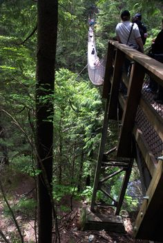 Lynn Canyon Park, North Vancouver, BC - a great place to hike and explore!