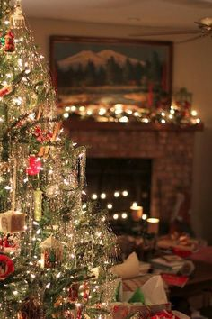 Tinsel tinsel everywhere!  Like our Xmas tree as kids.
