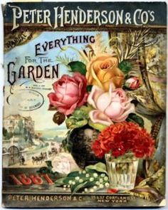 Free Vintage Flowers and Seed Packets Images ~ Antique Seed Packets were sooo pretty.