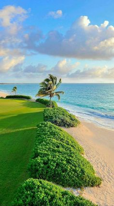beautiful landscapes and flowers Beautiful Places To Travel, Beautiful Beaches, Wonderful Places, Beautiful World, Foto Picture, Art Et Nature, Jolie Photo, Tropical Paradise, Nature Wallpaper