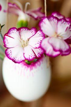 Mit Blumen in ausgeblasenen Eiern macht man zu Ostern nichts falsch! #blumen #flowers #diy #twbm #easter #ostern #eastereggs