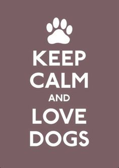 Keep clam and love dogs!!!!!!!!!!!!!❤