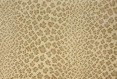 Stanton Linus Exotic Animal Print Carpet and Rugs Carpet Stairs, Carpet Flooring, Rugs On Carpet, Carpets, Leopard Carpet, Stanton Carpet, Royal Pavilion, Carpet Samples, Custom Rugs