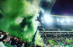 Sporting Clube de Portugal Ultras Football, Ronaldo Juventus, Scp, Northern Lights, Grande, Nature, Cartoons, Travel, Soccer